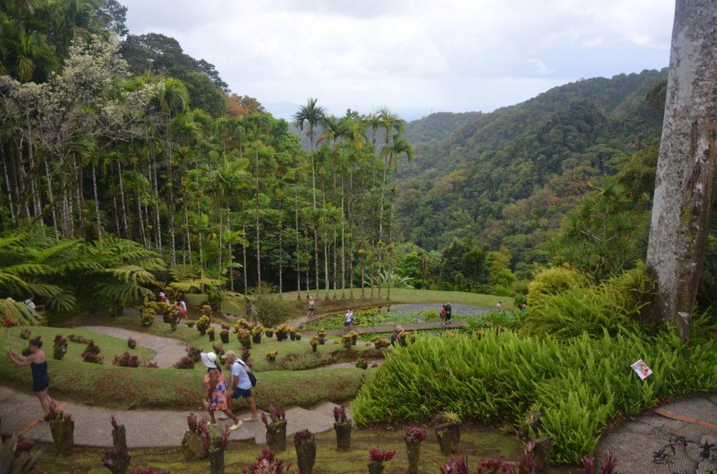 Ogród botaniczny Balata na Martynice