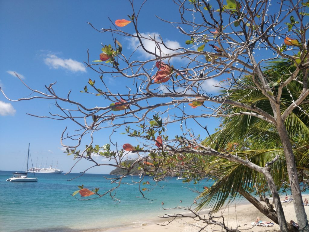 Bequia Lower Bay