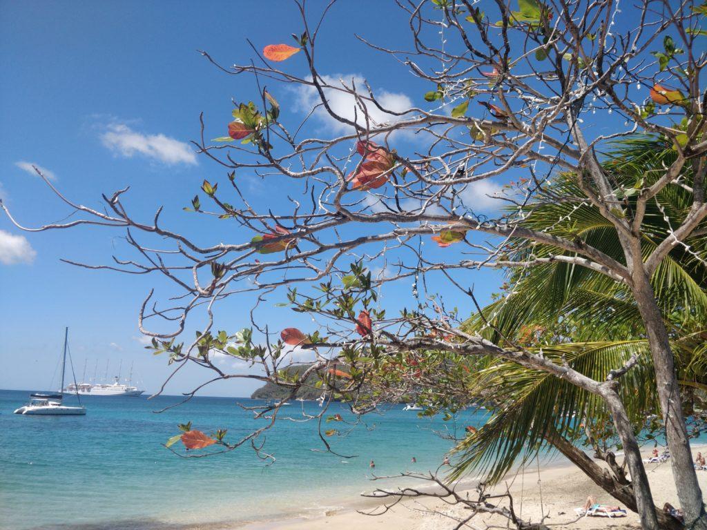 Plaża Lower Bay na Bequia