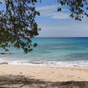 Antigua i Barbuda - raj dla miłośników podwodnej przyrody