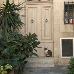 Mela olrajt maj friend, czyli o życiu na Malcie