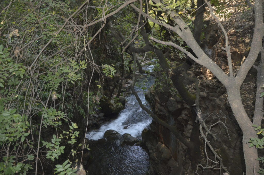 Park Narodowy Banias Izrael