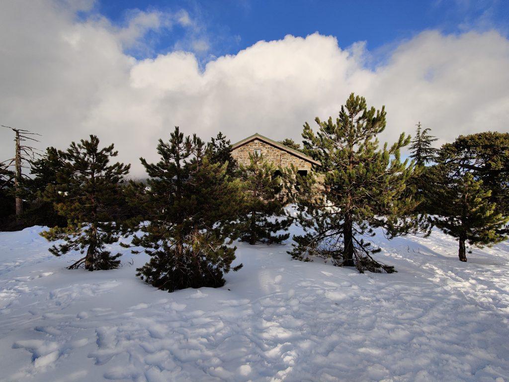 Śnieg na Cyprze