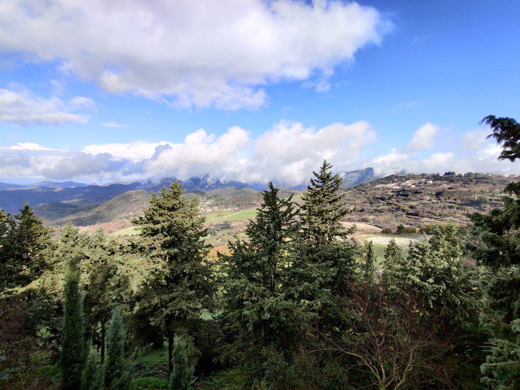 Cypr góry