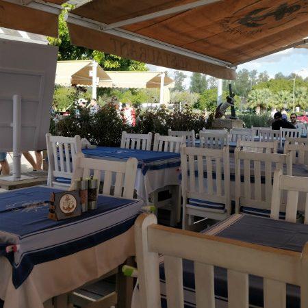Kuchnia cypryjska + lista restauracji na Cyprze