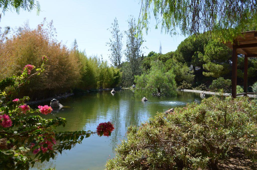 Marbella zdjęcia