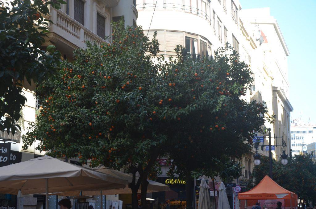 Walencja ulice