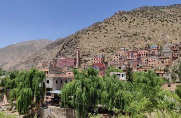 Berberowie