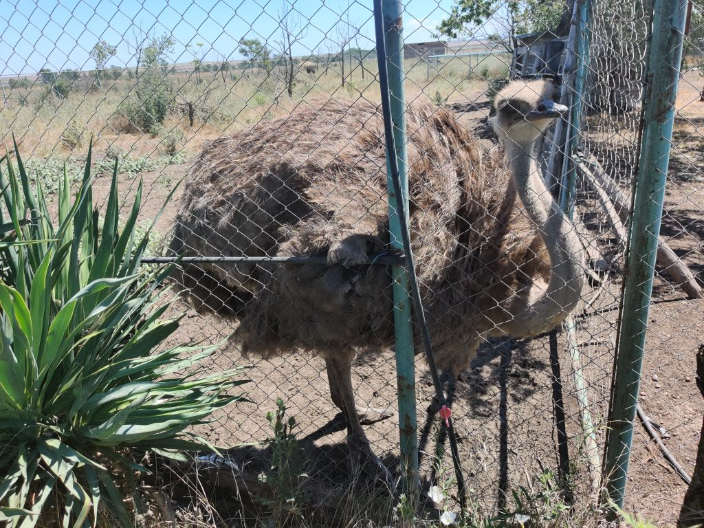 Zoo Burgas