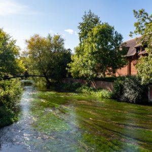 Salisbury w jeden dzień: 10 największych atrakcji
